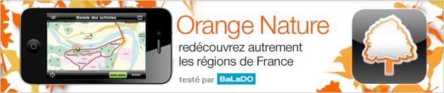 Orange-nature
