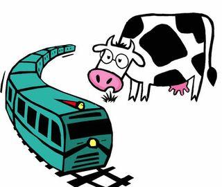 Les 2 vaches et le tgv